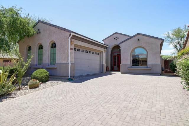 3437 W Little Hopi Drive, Phoenix, AZ 85086 (MLS #6086956) :: Conway Real Estate