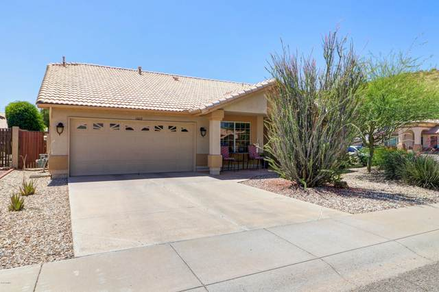 6009 W Alameda Road, Glendale, AZ 85310 (MLS #6086970) :: Conway Real Estate