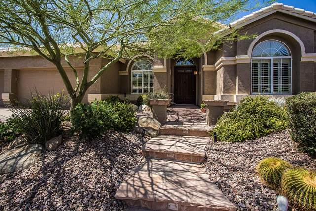 1336 E Desert Trumpet Road, Phoenix, AZ 85048 (MLS #6086996) :: Openshaw Real Estate Group in partnership with The Jesse Herfel Real Estate Group