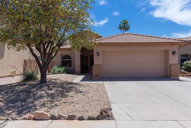 19435 N 33RD Street, Phoenix, AZ 85050 (MLS #6087007) :: Conway Real Estate