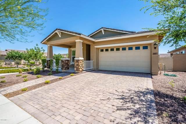 20601 W Carlton Manor Place, Buckeye, AZ 85396 (MLS #6087019) :: Brett Tanner Home Selling Team