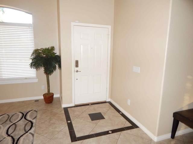 16221 N 162ND Drive, Surprise, AZ 85374 (MLS #6087042) :: Revelation Real Estate