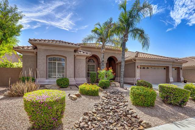 18221 N 53RD Street, Scottsdale, AZ 85254 (MLS #6087058) :: Arizona 1 Real Estate Team