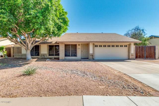 1307 W Stottler Drive, Chandler, AZ 85224 (MLS #6087065) :: Lucido Agency