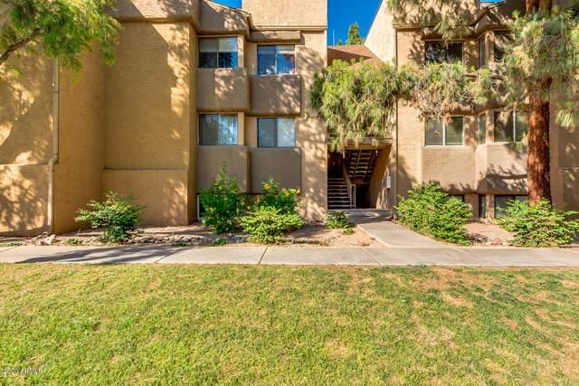 18811 N 19TH Avenue #2017, Phoenix, AZ 85027 (MLS #6087077) :: Nate Martinez Team