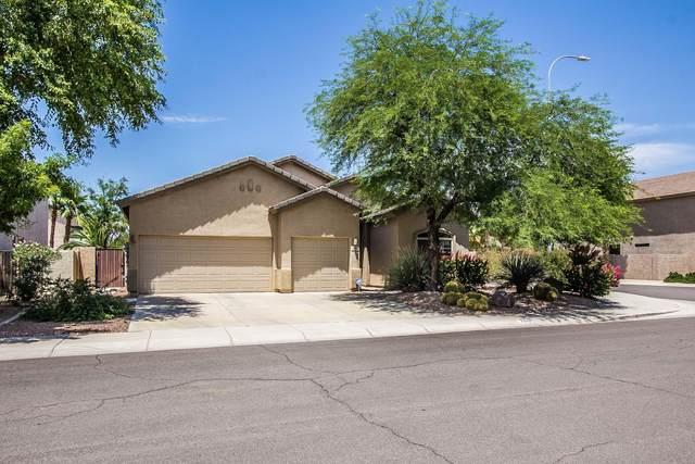 2910 E Riviera Place, Chandler, AZ 85249 (MLS #6087085) :: Lucido Agency