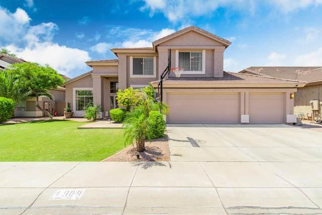 4909 E Michelle Drive, Scottsdale, AZ 85254 (MLS #6087095) :: Arizona 1 Real Estate Team