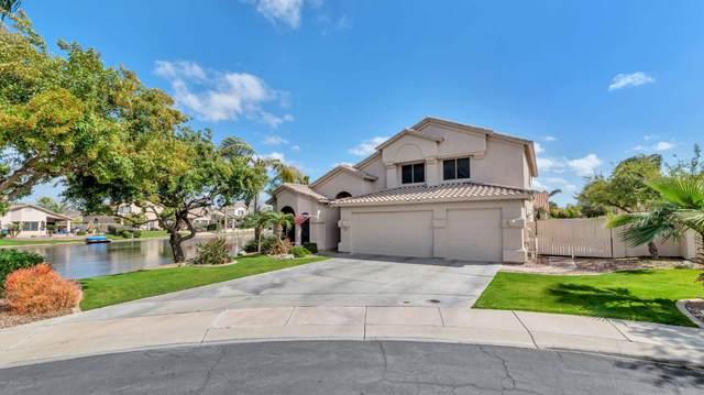 4861 S Wildflower Place, Chandler, AZ 85248 (MLS #6087121) :: Lucido Agency