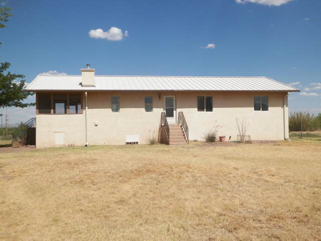 4833 W Duke Road, McNeal, AZ 85617 (MLS #6087122) :: Openshaw Real Estate Group in partnership with The Jesse Herfel Real Estate Group