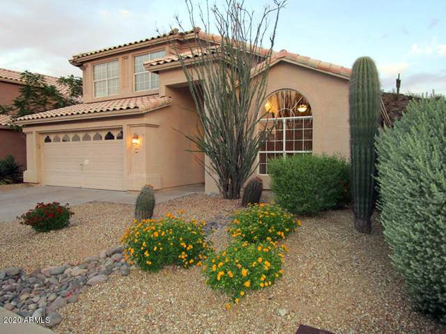 2817 E Muirwood Drive E, Phoenix, AZ 85048 (MLS #6087130) :: Openshaw Real Estate Group in partnership with The Jesse Herfel Real Estate Group