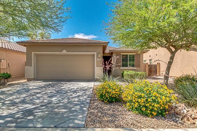 2751 W La Salle Street, Phoenix, AZ 85041 (MLS #6087134) :: The W Group
