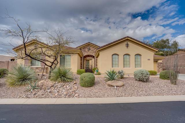 42112 N Bradon Way, Phoenix, AZ 85086 (MLS #6087159) :: My Home Group