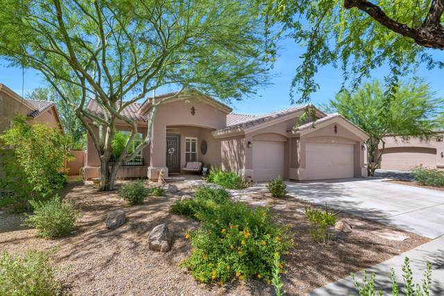3425 W Donatello Drive, Phoenix, AZ 85086 (MLS #6087201) :: My Home Group