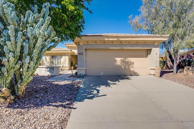 41237 N Shadow Creek Court, Anthem, AZ 85086 (MLS #6087229) :: The Daniel Montez Real Estate Group