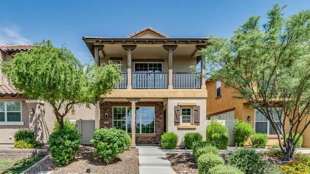 12457 W Hummingbird Terrace, Peoria, AZ 85383 (MLS #6087267) :: Dijkstra & Co.