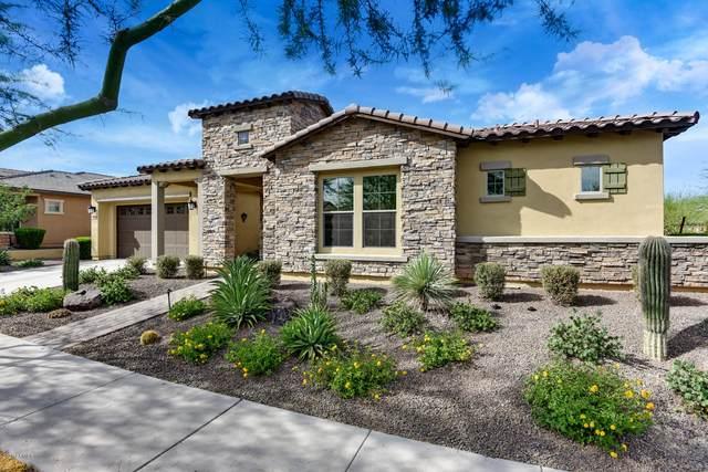 20944 W Hillcrest Boulevard, Buckeye, AZ 85396 (MLS #6087306) :: The Ellens Team
