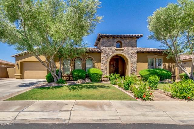 5330 S Big Horn Place, Chandler, AZ 85249 (MLS #6087333) :: Revelation Real Estate