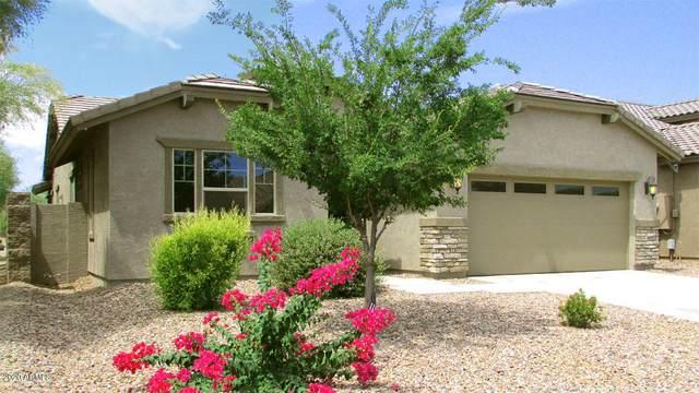28214 N Welton Place, San Tan Valley, AZ 85143 (MLS #6087338) :: My Home Group