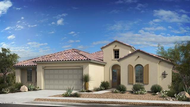 8731 W Brooklite Lane, Peoria, AZ 85383 (MLS #6087348) :: Dijkstra & Co.