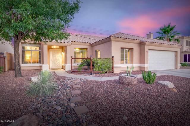 4533 E Mountain Sky Avenue, Phoenix, AZ 85044 (MLS #6087373) :: My Home Group