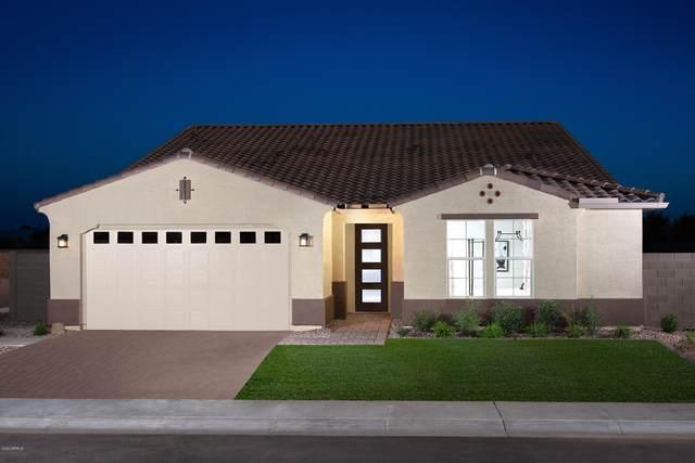 1383 E Sagittarius Place, Chandler, AZ 85249 (MLS #6087414) :: Revelation Real Estate