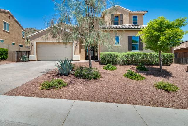10028 W Redbird Road, Peoria, AZ 85383 (MLS #6087444) :: The Laughton Team