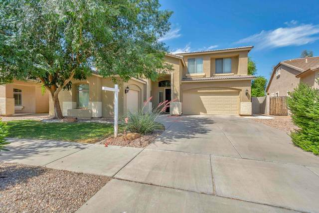 21373 E Via Del Oro, Queen Creek, AZ 85142 (MLS #6087459) :: Arizona 1 Real Estate Team