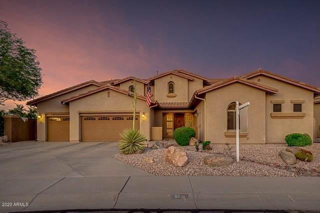 5501 S Big Horn Place, Chandler, AZ 85249 (MLS #6087462) :: Revelation Real Estate