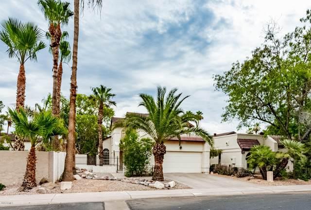 1709 N Apache Drive, Chandler, AZ 85224 (MLS #6087495) :: Revelation Real Estate