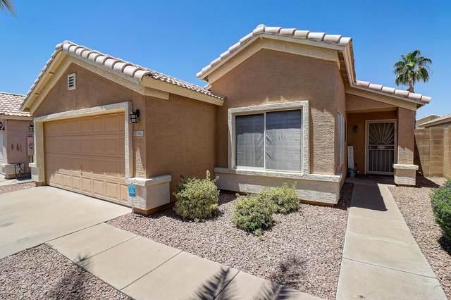 3612 W Charlotte Drive, Glendale, AZ 85310 (MLS #6087497) :: Dijkstra & Co.