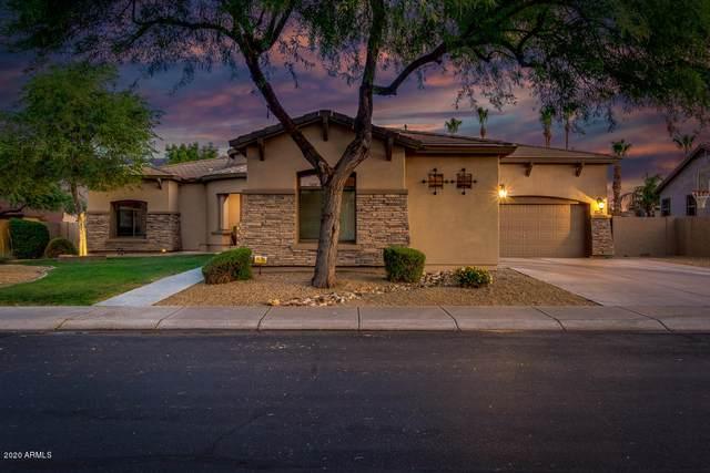 3203 E Birchwood Place, Chandler, AZ 85249 (MLS #6087517) :: Revelation Real Estate