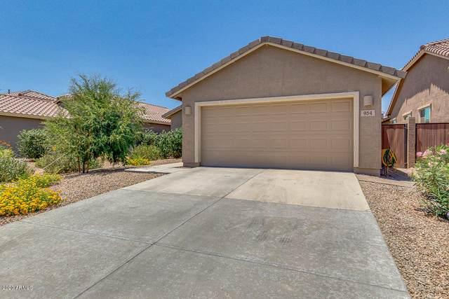 954 W Hot Springs Trail, San Tan Valley, AZ 85140 (MLS #6087545) :: Nate Martinez Team
