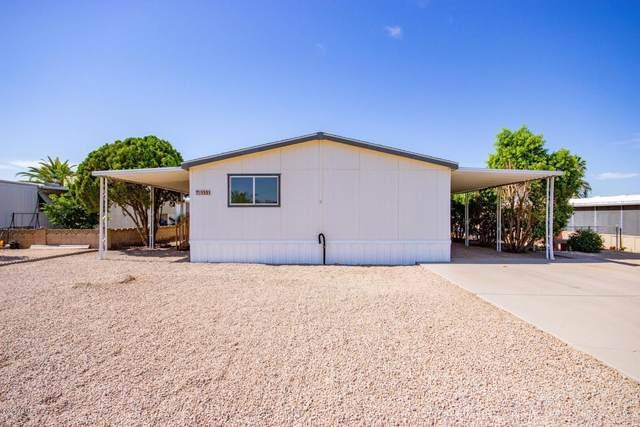 1531 E Helena Drive, Phoenix, AZ 85022 (MLS #6087549) :: Revelation Real Estate