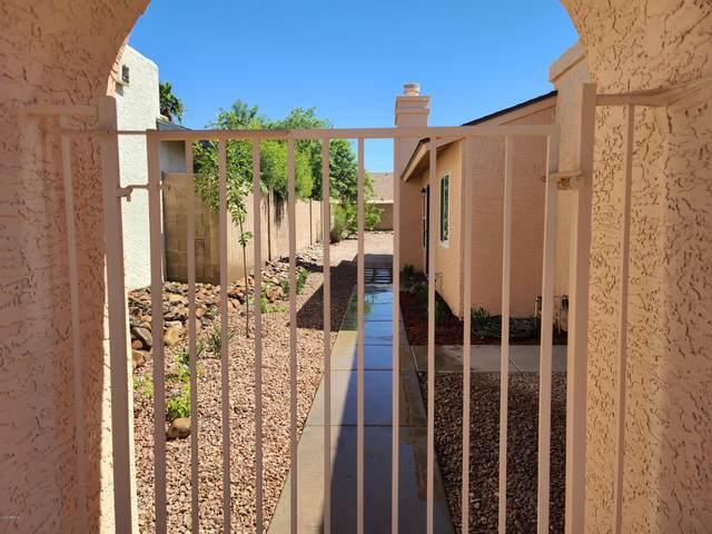 1117 E Marco Polo Road, Phoenix, AZ 85024 (MLS #6087593) :: Revelation Real Estate