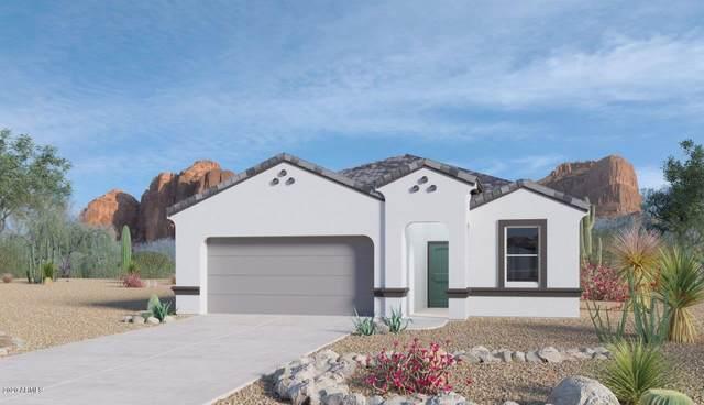 7841 W Kerby Avenue, Phoenix, AZ 85043 (MLS #6087608) :: Lifestyle Partners Team