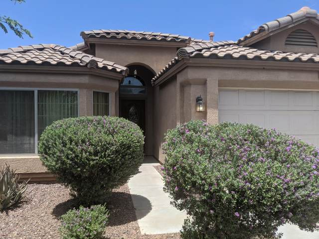 11414 W Locust Lane, Avondale, AZ 85323 (MLS #6087629) :: Conway Real Estate