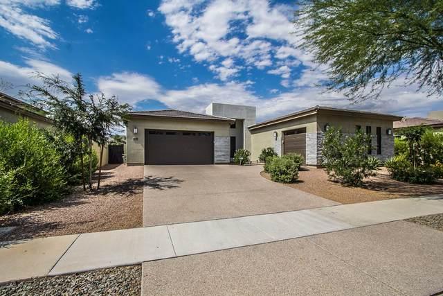 3828 E Lynx Place, Chandler, AZ 85249 (MLS #6087638) :: Arizona 1 Real Estate Team