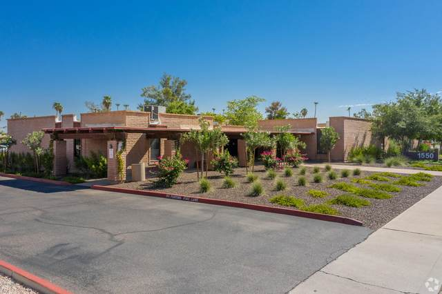 1550 E University Drive F1, Mesa, AZ 85203 (MLS #6087677) :: Brett Tanner Home Selling Team