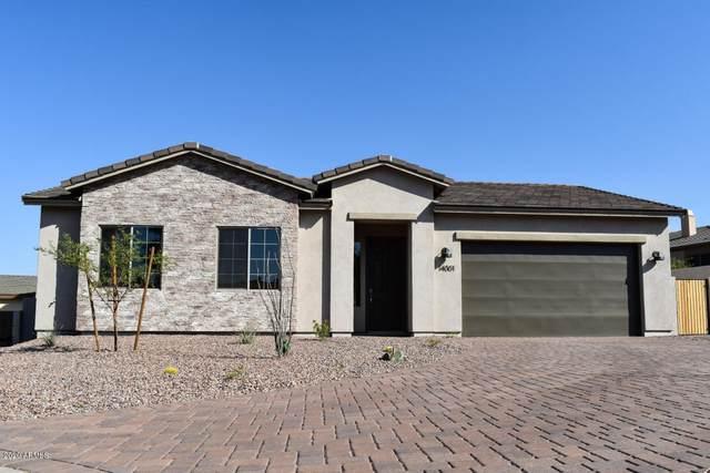 37421 N Kohuana Place, Cave Creek, AZ 85331 (MLS #6087684) :: ASAP Realty