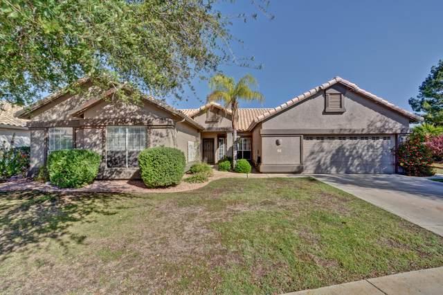 6556 W Melinda Lane, Glendale, AZ 85308 (MLS #6087688) :: Dijkstra & Co.