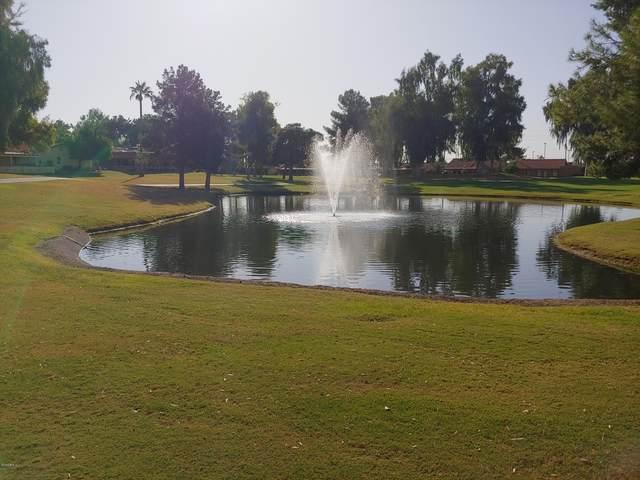 1343 Leisure World, Mesa, AZ 85206 (MLS #6087689) :: Lux Home Group at  Keller Williams Realty Phoenix