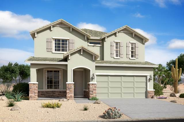 34308 N Elizabeth Avenue, Queen Creek, AZ 85142 (MLS #6087738) :: ASAP Realty