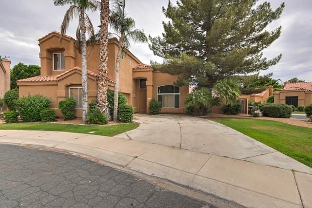 2169 W Peninsula Circle, Chandler, AZ 85248 (MLS #6087742) :: Brett Tanner Home Selling Team
