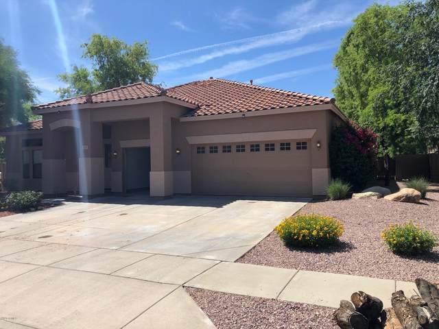 3115 W Buckhorn Trail, Phoenix, AZ 85083 (MLS #6087748) :: Dijkstra & Co.