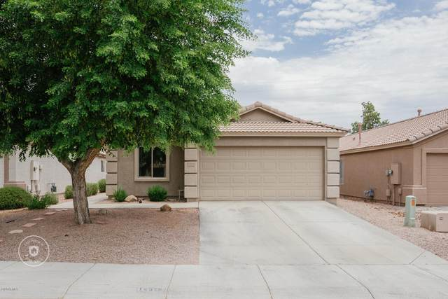 16529 N 113TH Avenue, Surprise, AZ 85378 (MLS #6087754) :: Dave Fernandez Team | HomeSmart