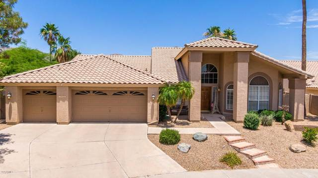 1408 E Amberwood Drive, Phoenix, AZ 85048 (MLS #6087758) :: The Luna Team