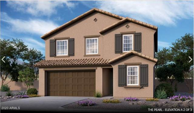 18482 W Ipswitch Way, Surprise, AZ 85374 (MLS #6087759) :: ASAP Realty