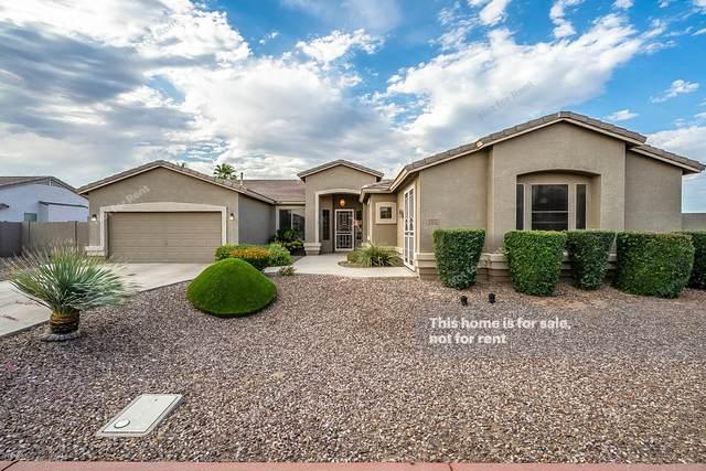 1222 E Longhorn Place, Chandler, AZ 85286 (MLS #6087768) :: Brett Tanner Home Selling Team