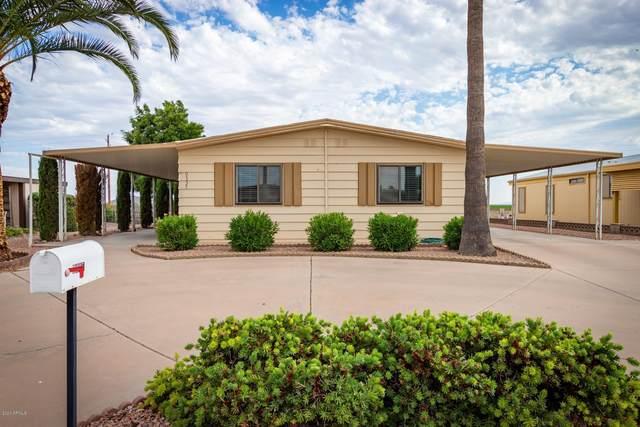 9335 E Navajo Place, Sun Lakes, AZ 85248 (MLS #6087842) :: Brett Tanner Home Selling Team