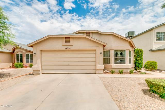 18075 N 88TH Drive, Peoria, AZ 85382 (MLS #6087843) :: Dijkstra & Co.